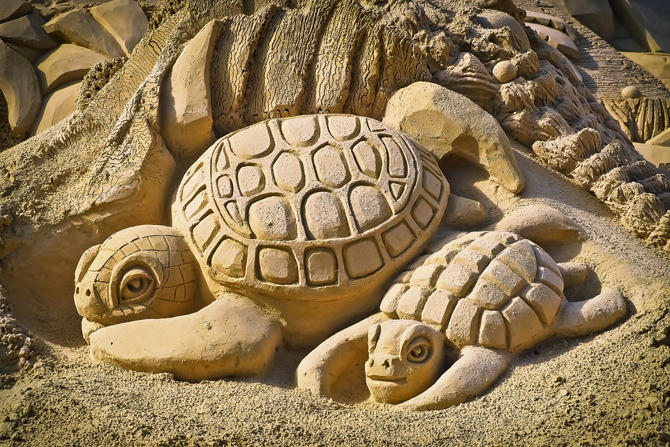 Turtles in the sand